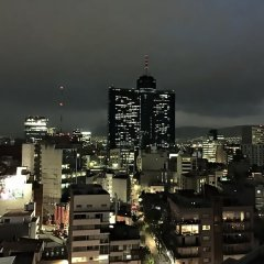 TRYP by Wyndham Mexico City World Trade Center Area Hotel фото 4