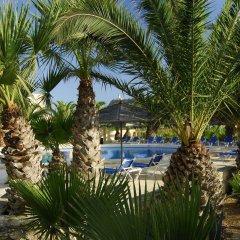 Отель Gozo Houses of Character бассейн фото 2