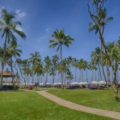 Отель Club Hotel Dolphin Шри-Ланка, Вайккал - отзывы, цены и фото номеров - забронировать отель Club Hotel Dolphin онлайн с домашними животными