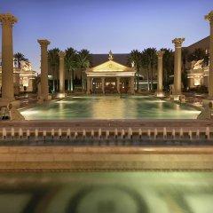 Отель Caesars Palace США, Лас-Вегас - 8 отзывов об отеле, цены и фото номеров - забронировать отель Caesars Palace онлайн бассейн фото 3