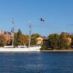 Отель STF af Chapman & Skeppsholmen Швеция, Стокгольм - 1 отзыв об отеле, цены и фото номеров - забронировать отель STF af Chapman & Skeppsholmen онлайн пляж