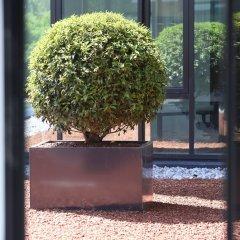 Отель kommod фото 4
