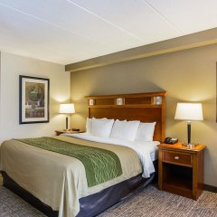 Отель Comfort Inn Washington Dulles International удобства в номере