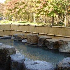 Отель Mine-no-yu Япония, Уторо - отзывы, цены и фото номеров - забронировать отель Mine-no-yu онлайн бассейн фото 2