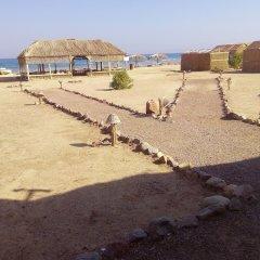 Отель Baraka Camp пляж