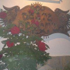 Отель Dvata Brjasta Family Hotel Болгария, Асеновград - отзывы, цены и фото номеров - забронировать отель Dvata Brjasta Family Hotel онлайн интерьер отеля
