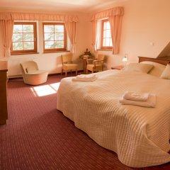 Отель Vitkova Hora Чехия, Карловы Вары - 1 отзыв об отеле, цены и фото номеров - забронировать отель Vitkova Hora онлайн комната для гостей