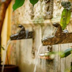 Отель Ambassador Garden Home Непал, Катманду - отзывы, цены и фото номеров - забронировать отель Ambassador Garden Home онлайн фото 5