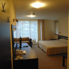 Отель Meteor Family Hotel Болгария, Чепеларе - отзывы, цены и фото номеров - забронировать отель Meteor Family Hotel онлайн фото 24
