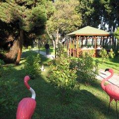 Seka Park Hotel Турция, Дербент - отзывы, цены и фото номеров - забронировать отель Seka Park Hotel онлайн детские мероприятия