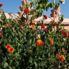 Отель Riad Ella Марокко, Марракеш - отзывы, цены и фото номеров - забронировать отель Riad Ella онлайн фото 4