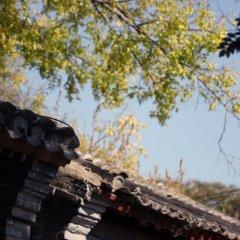 Отель Dongfang Shengda Hotel Китай, Пекин - отзывы, цены и фото номеров - забронировать отель Dongfang Shengda Hotel онлайн приотельная территория фото 2