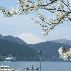 Отель The Prince Hakone Lake Ashinoko Идзунагаока приотельная территория фото 2
