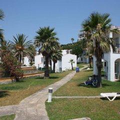 TRH Tirant Playa Beach Hotel фото 10