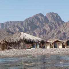 Отель Sahara Beach Camp фото 5