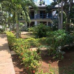 Отель Negril Tree House Resort фото 10