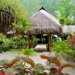 Отель Bora Bora Pearl Beach Resort and Spa Французская Полинезия, Бора-Бора - отзывы, цены и фото номеров - забронировать отель Bora Bora Pearl Beach Resort and Spa онлайн фото 12