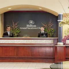 Отель Hilton Grand Vacations on Paradise (Convention Center) фото 4