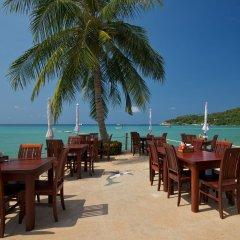 Отель Ko Tao Resort - Beach Zone питание фото 3