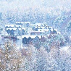Отель Chalet Resort Южная Корея, Пхёнчан - отзывы, цены и фото номеров - забронировать отель Chalet Resort онлайн пляж