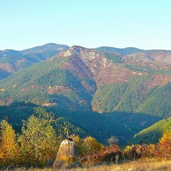 Отель Melanya Mountain Retreat Болгария, Ардино - отзывы, цены и фото номеров - забронировать отель Melanya Mountain Retreat онлайн фото 9