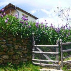 Отель Melanya Mountain Retreat Болгария, Ардино - отзывы, цены и фото номеров - забронировать отель Melanya Mountain Retreat онлайн фото 8