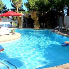 Отель Blue Moon Resort Las Vegas США, Лас-Вегас - отзывы, цены и фото номеров - забронировать отель Blue Moon Resort Las Vegas онлайн бассейн фото 2