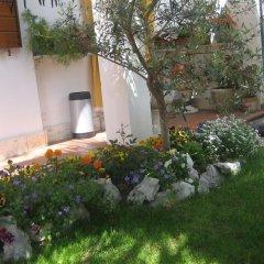 Отель Bed & Breakfast 2 Palme Италия, Падуя - отзывы, цены и фото номеров - забронировать отель Bed & Breakfast 2 Palme онлайн