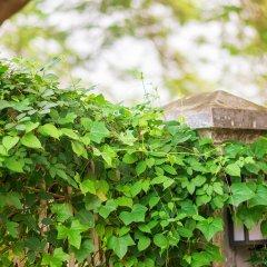 Отель Gulangyu Phoenix Китай, Сямынь - отзывы, цены и фото номеров - забронировать отель Gulangyu Phoenix онлайн фото 3