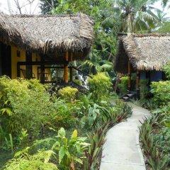 Отель Mango Bay Resort фото 3
