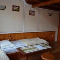 Отель Zlatniyat Telets Guest Rooms детские мероприятия