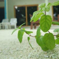 Отель Гостевой Дом Crystal Dhiffushi Мальдивы, Диффуши - отзывы, цены и фото номеров - забронировать отель Гостевой Дом Crystal Dhiffushi онлайн фото 2