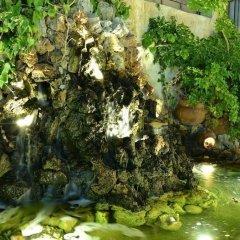Отель Mistral Греция, Эгина - отзывы, цены и фото номеров - забронировать отель Mistral онлайн фото 6