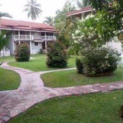 Отель Bougain Villa Шри-Ланка, Берувела - отзывы, цены и фото номеров - забронировать отель Bougain Villa онлайн фото 10