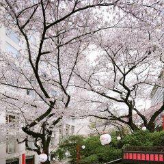 Отель Prince Sakura Tower Токио фото 10