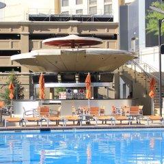 Отель Elara by Hilton Grand Vacations - Center Strip США, Лас-Вегас - 8 отзывов об отеле, цены и фото номеров - забронировать отель Elara by Hilton Grand Vacations - Center Strip онлайн бассейн фото 3