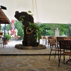 Hotel Gradina фото 2