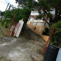 Отель The Cozy Family Inn Guesthouse Ямайка, Порт Антонио - отзывы, цены и фото номеров - забронировать отель The Cozy Family Inn Guesthouse онлайн фото 2