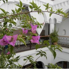Отель Riad Ailen Марракеш фото 6