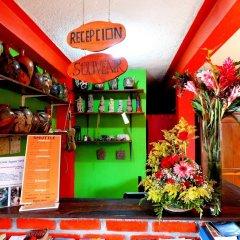 Отель & Hostal Yaxkin Copan Гондурас, Копан-Руинас - отзывы, цены и фото номеров - забронировать отель & Hostal Yaxkin Copan онлайн развлечения