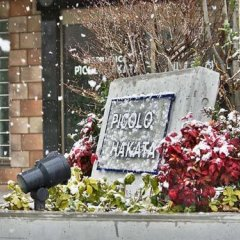 Отель Picolo Hakata Хаката с домашними животными