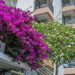 Отель Dorisol Buganvilia Португалия, Фуншал - отзывы, цены и фото номеров - забронировать отель Dorisol Buganvilia онлайн