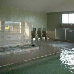 Nakagawa Onsen Hotel Arai Насусиобара бассейн