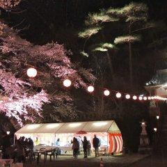 Hotel Harvest Kinugawa Никко развлечения