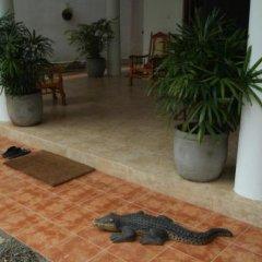Отель Prime Time Hotel Шри-Ланка, Унаватуна - отзывы, цены и фото номеров - забронировать отель Prime Time Hotel онлайн фото 2