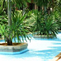 Отель Botany Beach Resort На Чом Тхиан детские мероприятия
