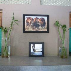 Отель Yala Villa Шри-Ланка, Тиссамахарама - отзывы, цены и фото номеров - забронировать отель Yala Villa онлайн интерьер отеля