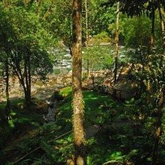Отель Rios Tropicales фото 8
