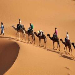 Отель Maison Aicha Марокко, Марракеш - отзывы, цены и фото номеров - забронировать отель Maison Aicha онлайн приотельная территория