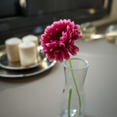 Отель Urban Nest - Suites & Apartments Греция, Афины - отзывы, цены и фото номеров - забронировать отель Urban Nest - Suites & Apartments онлайн удобства в номере фото 2